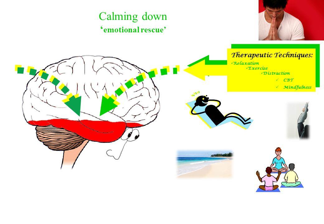© Reducing Anxiety Management Plan [RAMP]